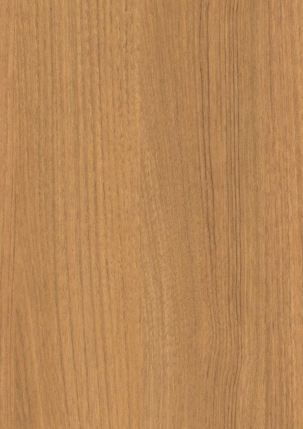 Stejar Auriu
