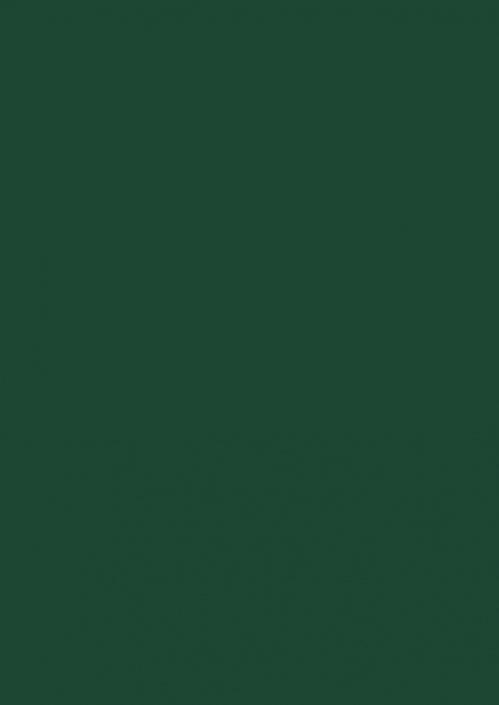 Verde SM
